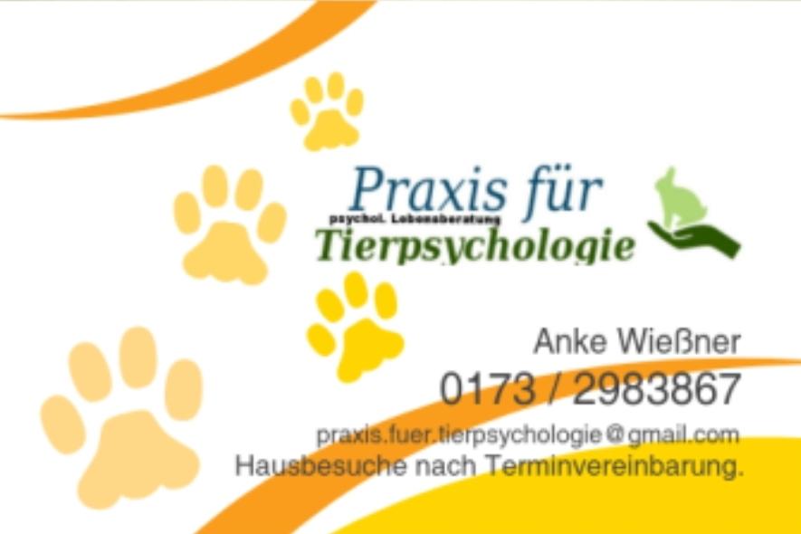 Bild zu Praxis für Tierpsychologie I psychologische Lebensberatung Veterinärwesen in Leipzig